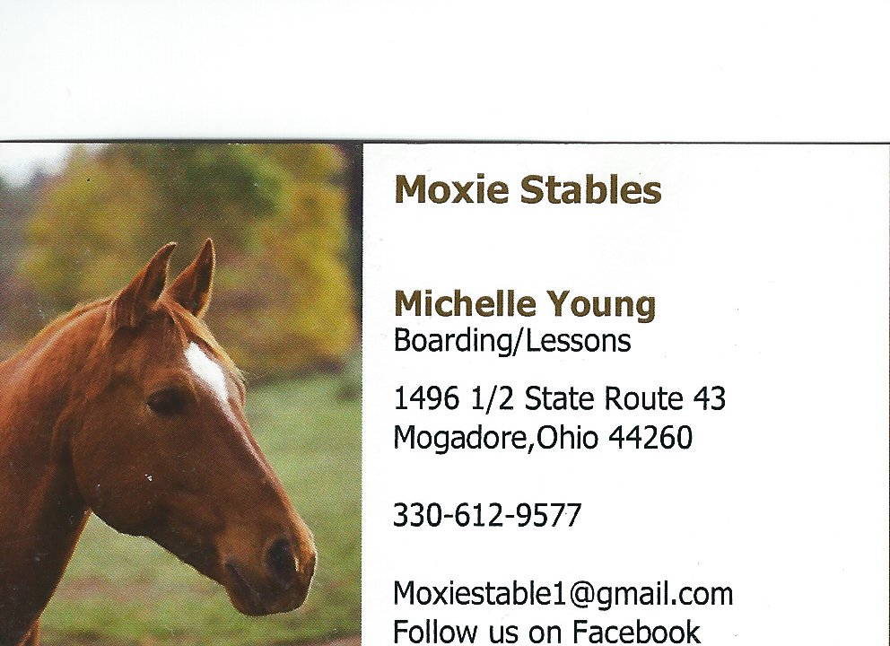 Michelle Young Moxie Stables